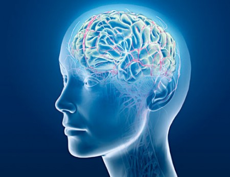 ect tms brain waves